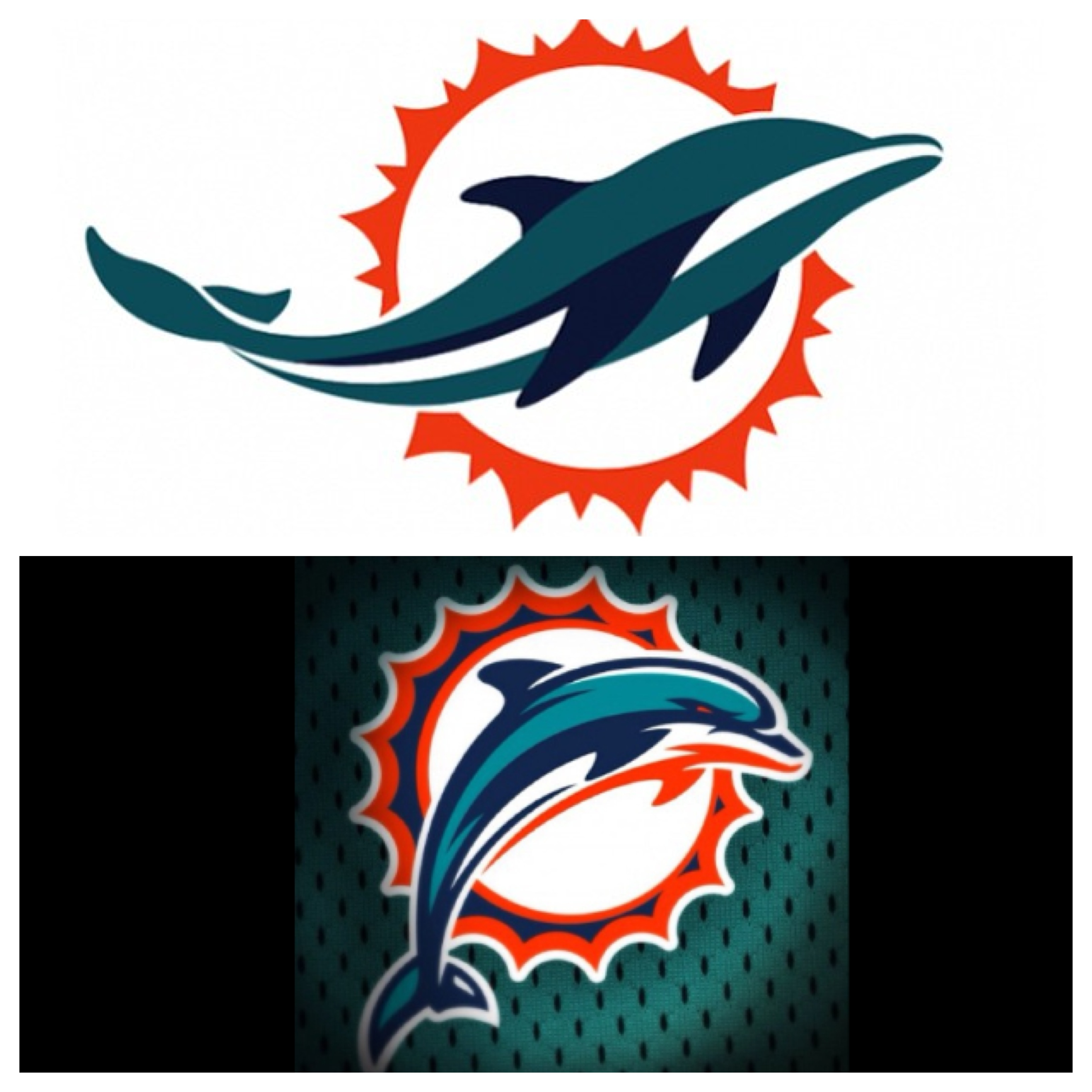 dolphins2013